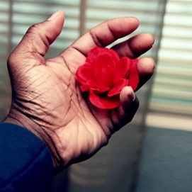 Red Petals & The Blues - January 2012