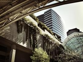 Untitled Urban Landscape - May 2013