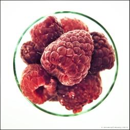 Raspberries #2 - June 2013