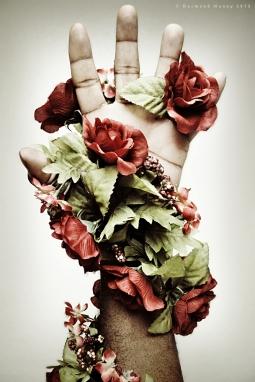 Je vois la vie en rose - October 2013