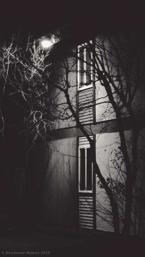 Night Lights #2 - January 2014