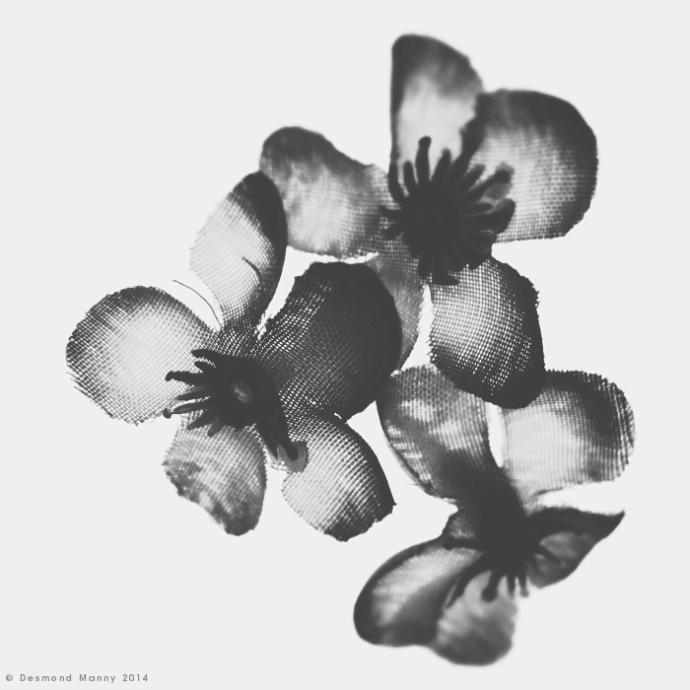 Faux Flower #4 - January 2014