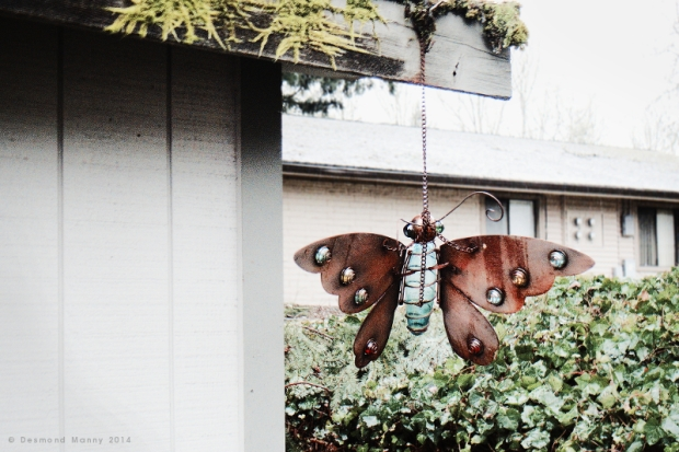 Iron Butterfly - February 2014