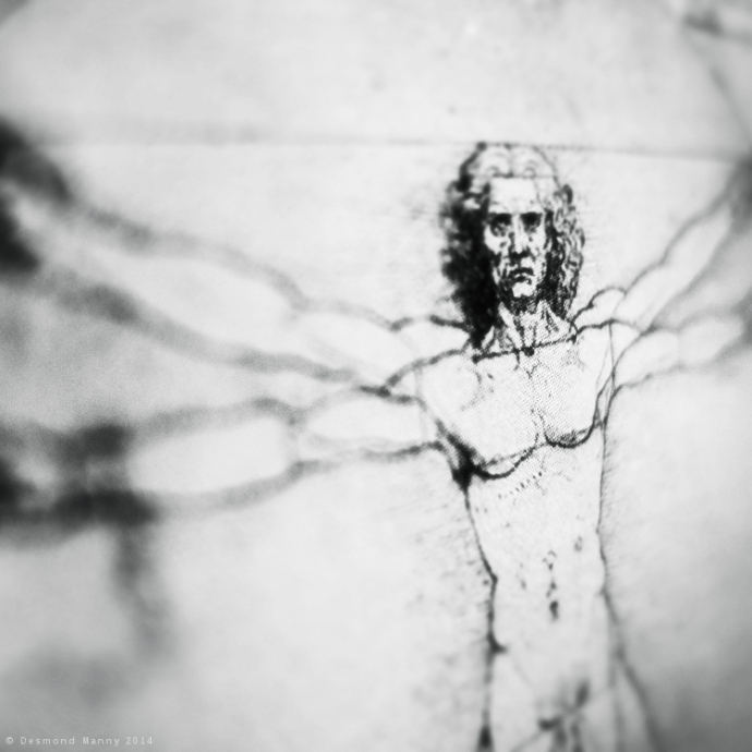 Vitruvian Man - February 2014