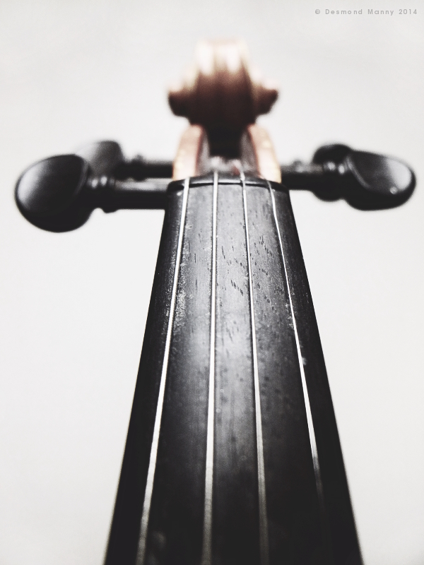 Violin (neck) - March 2014