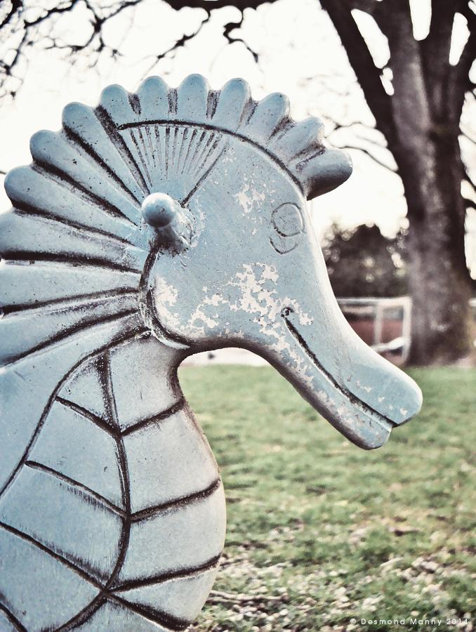 Happy Seahorse - March 2014