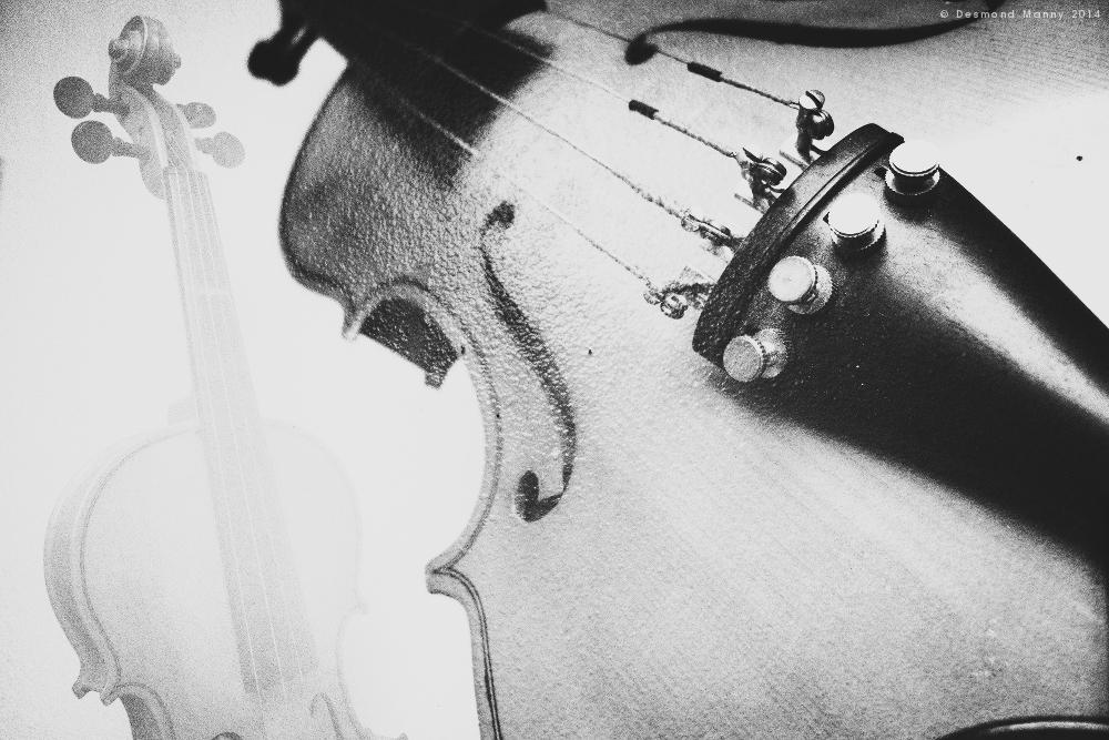 Violin (double exposure) - May 2014
