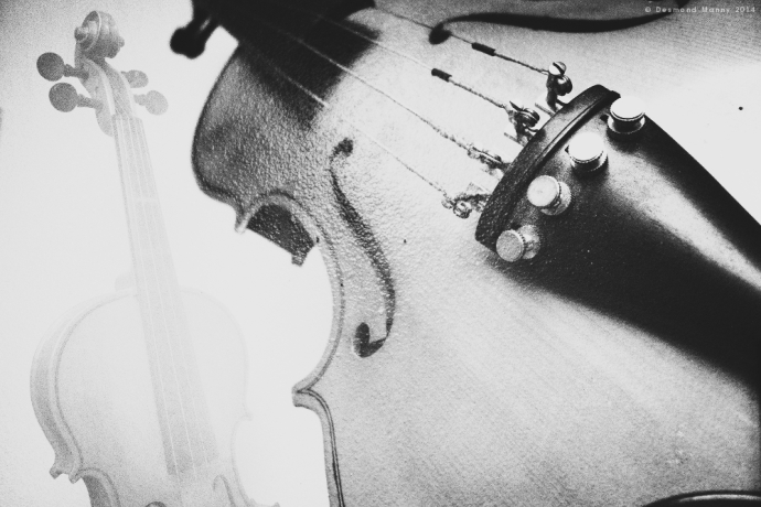 Violin (double exposure) - May 2014
