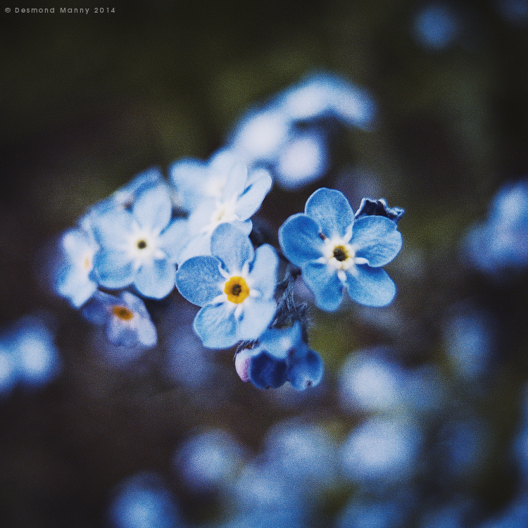 Paint It Blue #3 - May 2014
