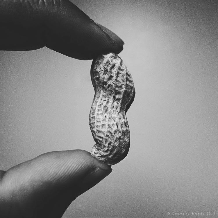 Consider the Peanut #1 - July 2014