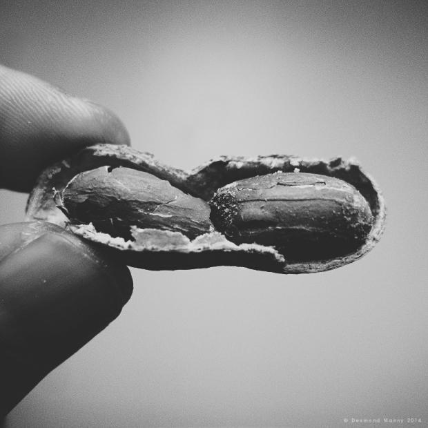 Consider the Peanut #5 - July 2014