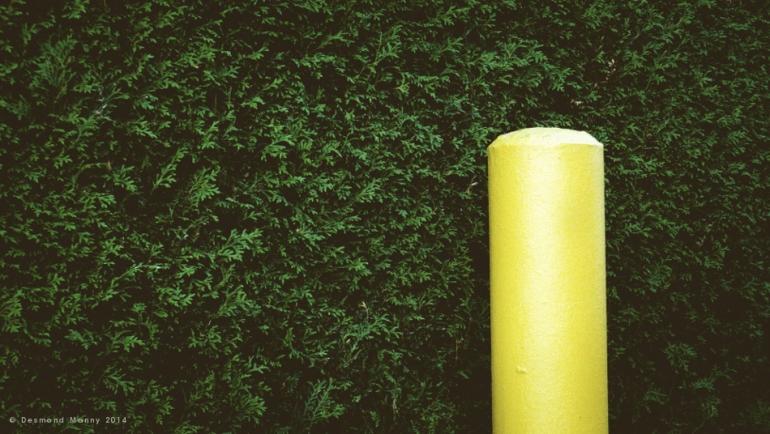 Yellow Pillar - June 2014