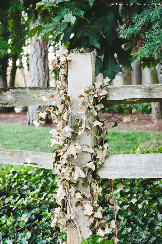 Fence Post - August 2014