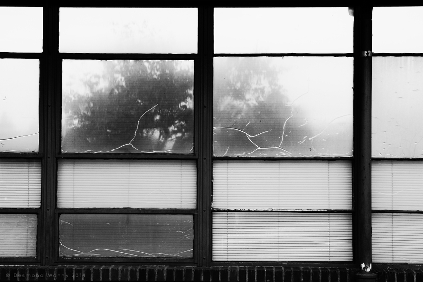 Window Panes - August 2014