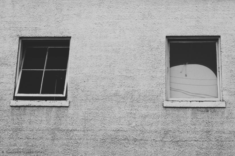 Window View - August 2014