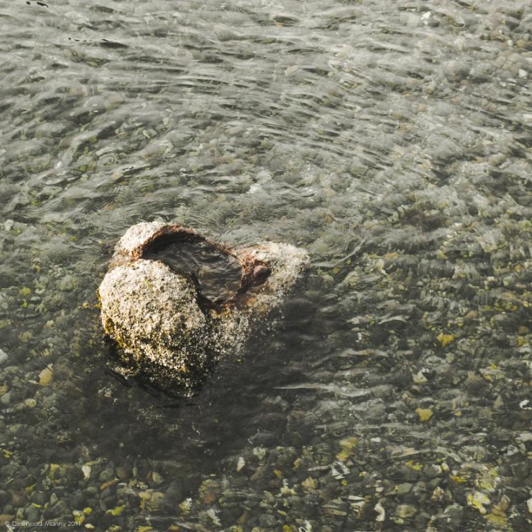 Ocean Rock - August 2014