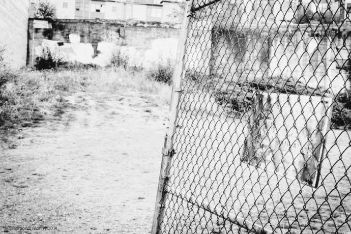 Broken Fence - August 2014
