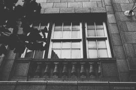 Window - August 2014