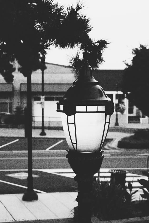 Streetlamp - August 2014