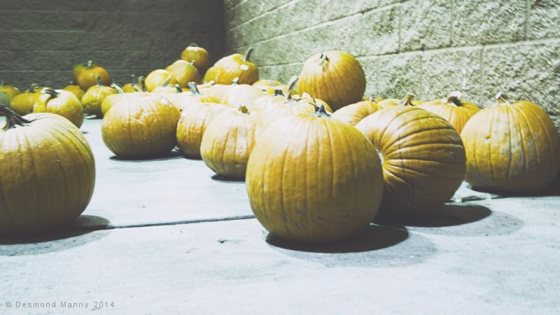 City Patch - October 2014