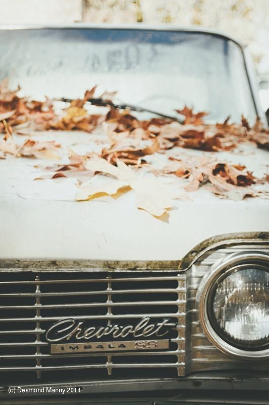 Chevy Impala #2 - November 2014