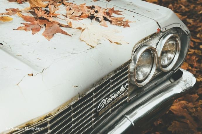 Chevy Impala #3 - November 2014