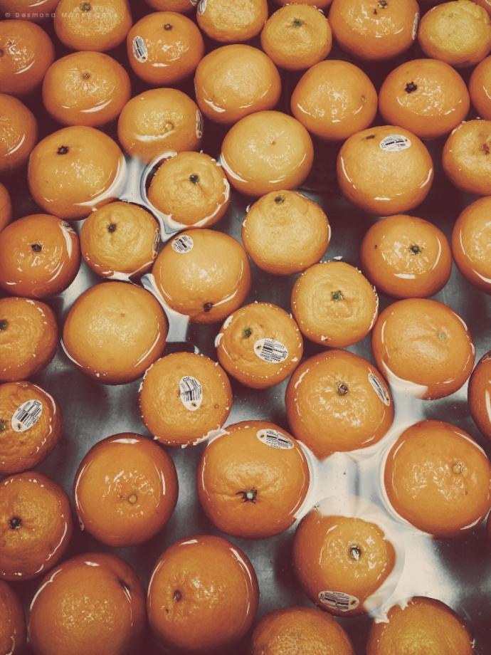 Buoyant Fruits - December 2014