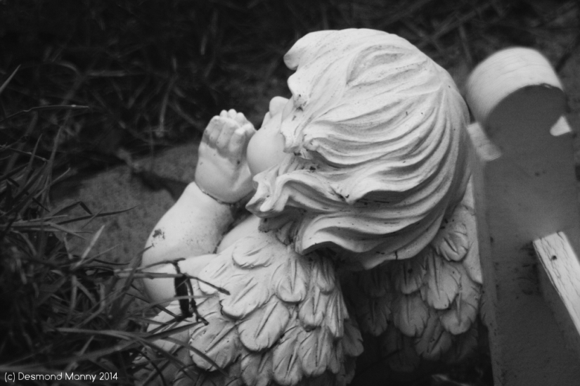 Prayer - December 2014