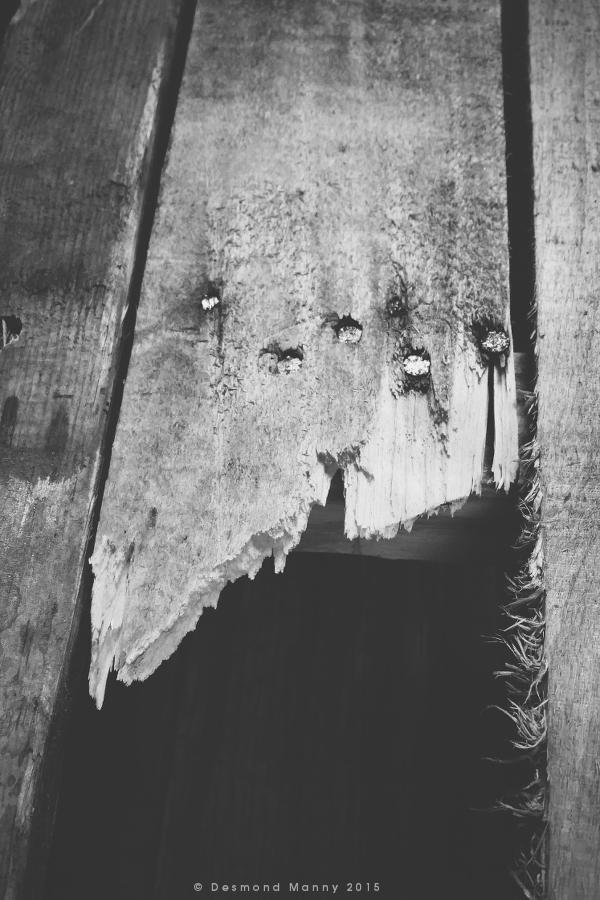 Broken Plank #2 - January 2015