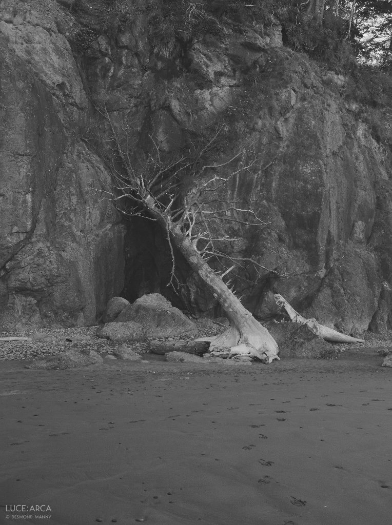 Ruby Beach No. 14